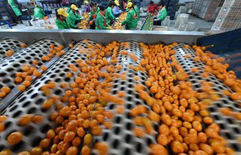 Tangerine industry helps locals in Jiangxi to get rid of poverty
