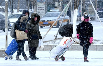 Cold front brings snowfall in NE China