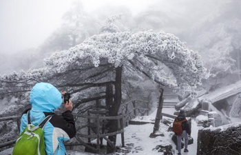 Huangshan Mountain sees this winter's first snowfall