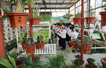 Botanic pavilion built at school in China's Shandong