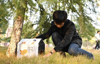Shelters for stray animals made by students in China's Hunan