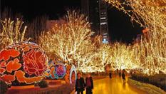 天津璀璨灯光迎元宵 南市食品街笑迎八方来客