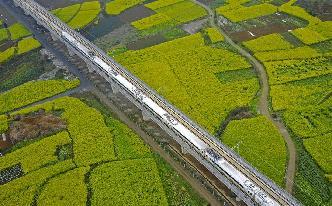 開往春天的高鐵