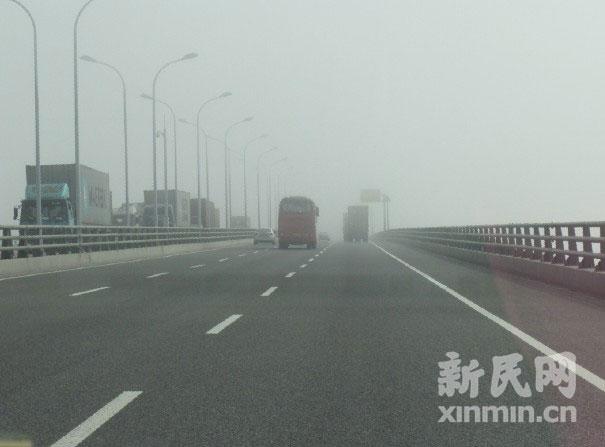 上海东海大桥集装箱卡车连环相撞 恢复通车图片