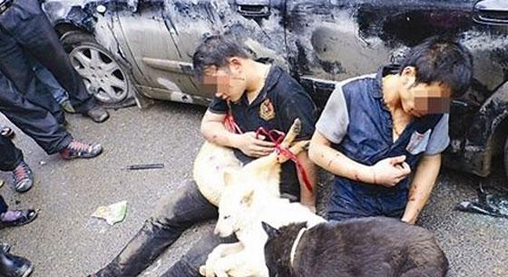偷狗男被逼抱死狗示眾