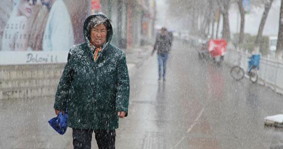 新疆北部多地四月飛雪