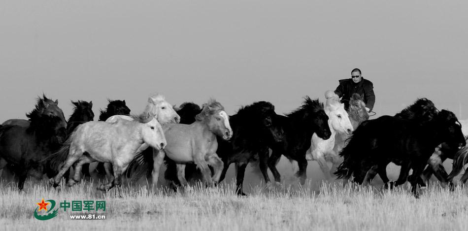蒙古人从孩童时期就开始学习骑马和养马图片