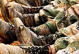 黑龍江抗洪戰士連續奮鬥20多天 軍靴已被磨破