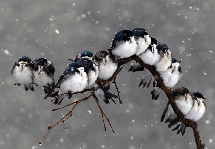 风光摄影:2012自然奇景大搜罗 图片频道
