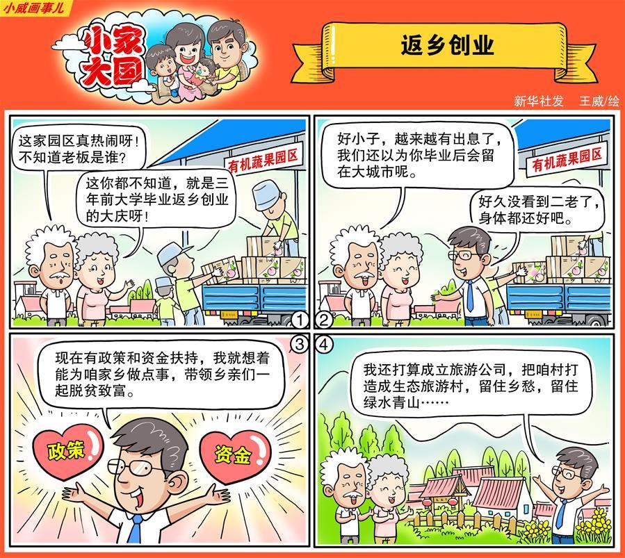 小家大国:返乡创业(漫画).