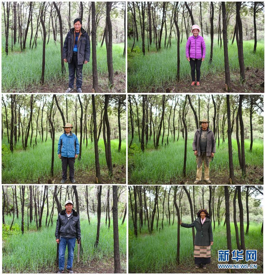 (十九大·读报告 话民生)(9)加快生态文明体制改革,建设美丽中国