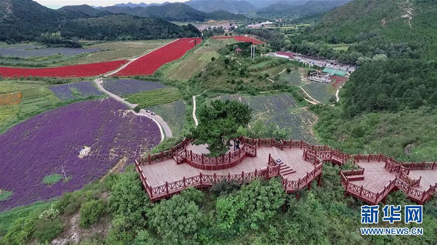 (十九大·读报告 话民生)(10)加快生态文明体制改革,建设美丽中国