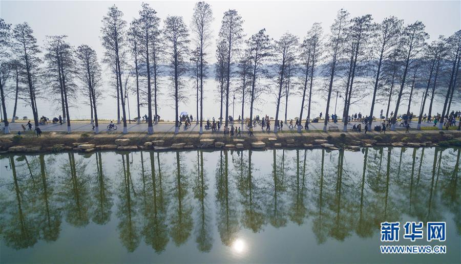 (十九大·读报告 话民生)(13)加快生态文明体制改革,建设美丽中国