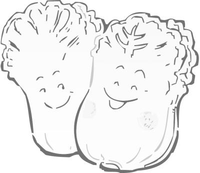 白菜简笔画-看地标白菜如何超越 白菜价