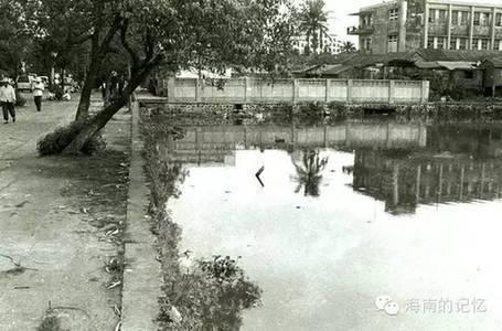 海南的记忆 海南岛的过去是什么样子 三 海口旧貌图片