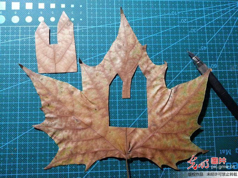 用树叶做粘贴画步骤