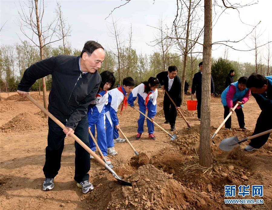 (XHDW)(5)党和国家领导人参加首都义务植树活动