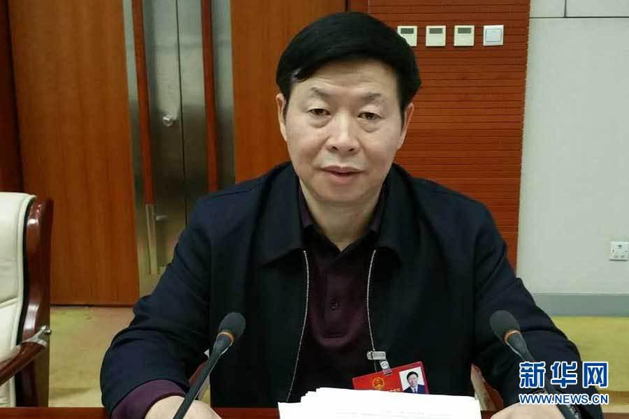 全国人大代表、天津市工业和信息化委主任李朝兴.新华网发-全国人图片