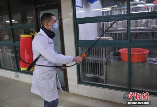 禽流感高发季如何预防有良方? 专家建议需注意这些