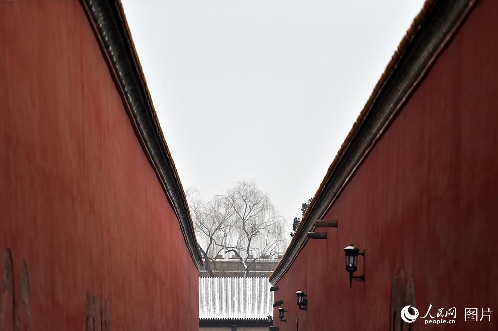 人民網記者帶您故宮賞雪 威嚴靜謐的唯美畫卷【6】