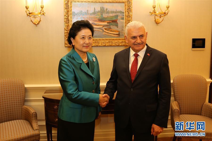 4月18日,土耳其總理耶爾德勒姆在安卡拉會見中國國務院副總理劉延東。 新華社記者 秦彥洋攝