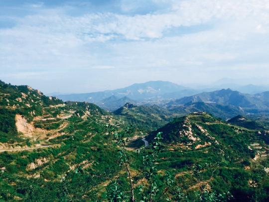 从靠山吃山到创业共富:一个国家贫困县的蝶变之路