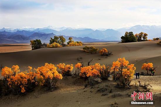青海首次公布地理国情 家底 平均海拔4058.40米图片