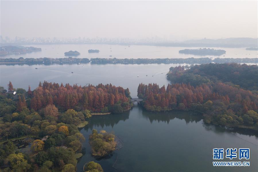 (冬季美丽生态)(3)冬韵西湖