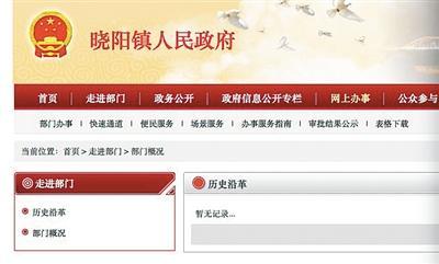政府网站普查结果 112个不合格超7成为县级以下图片