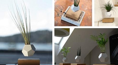 飄在空中的綠植:瑞典發明磁懸浮花盆