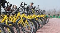 共享單車:讓綠色出行更加規范