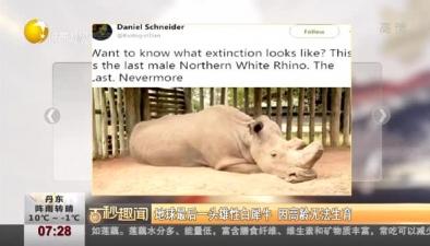 地球最後一頭雄性白犀牛 因高齡無法生育