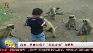 """印度:幼童與猴子""""稱兄道弟""""有默契"""