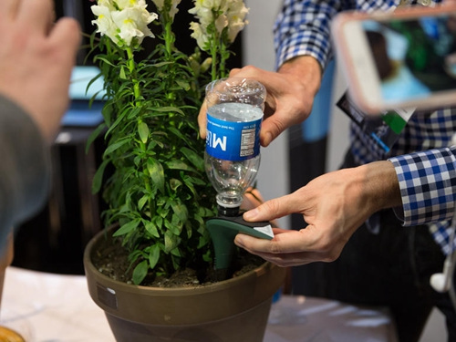 法国厂商推出智能花盆可自动给花浇水施肥
