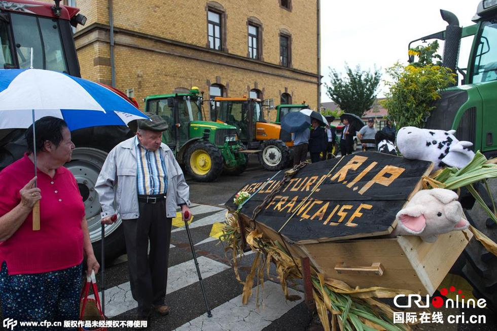 收入证明_2001年法国农民收入