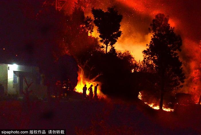 印度北阿坎德邦森林大火 火势凶猛染红了天际