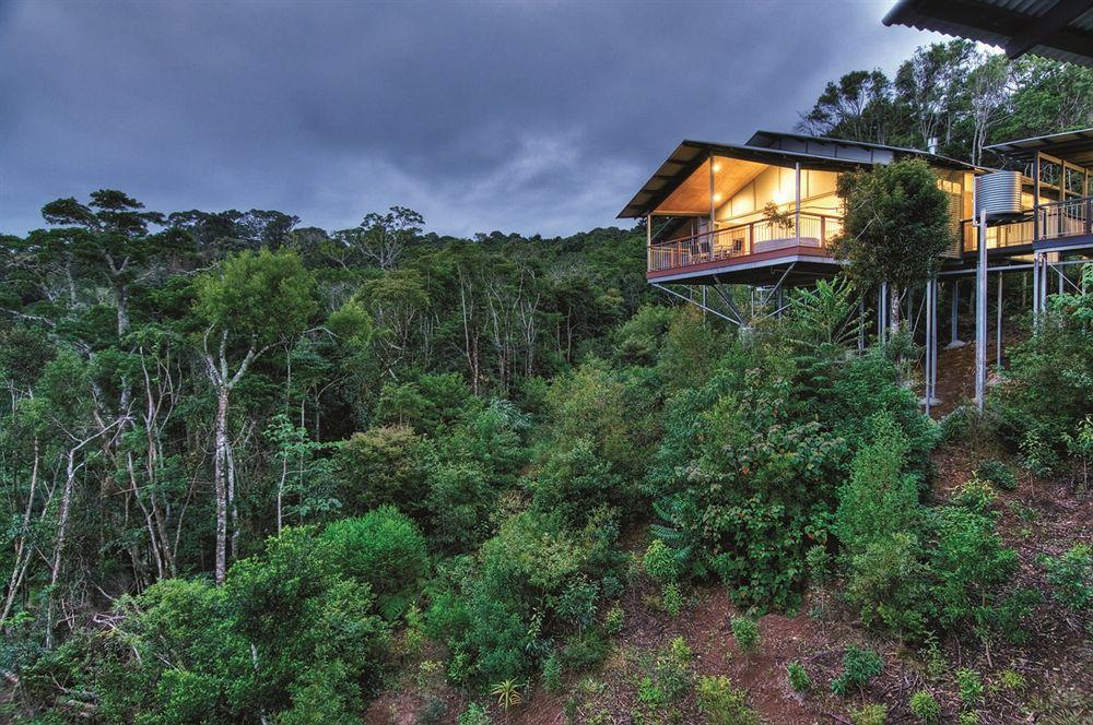 迪拜酒店建第一座热带雨林面积近7000平米