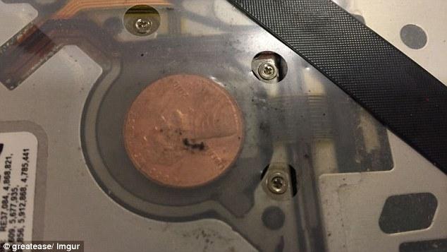 惊呆!苹果笔记本电脑里面竟藏有谜一般的硬币(图)