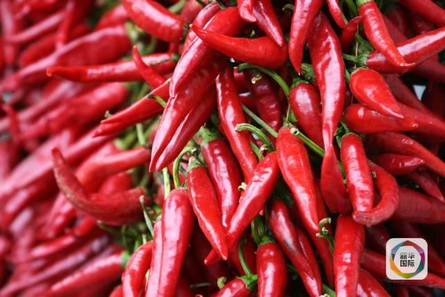 科普丨常吃红辣椒,可能延年益寿哟