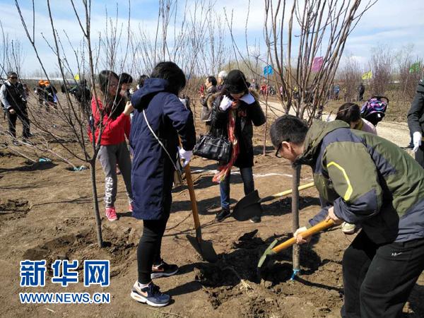 """""""种下千株树 盼开友谊花""""——中国日本商会开展植树活动"""