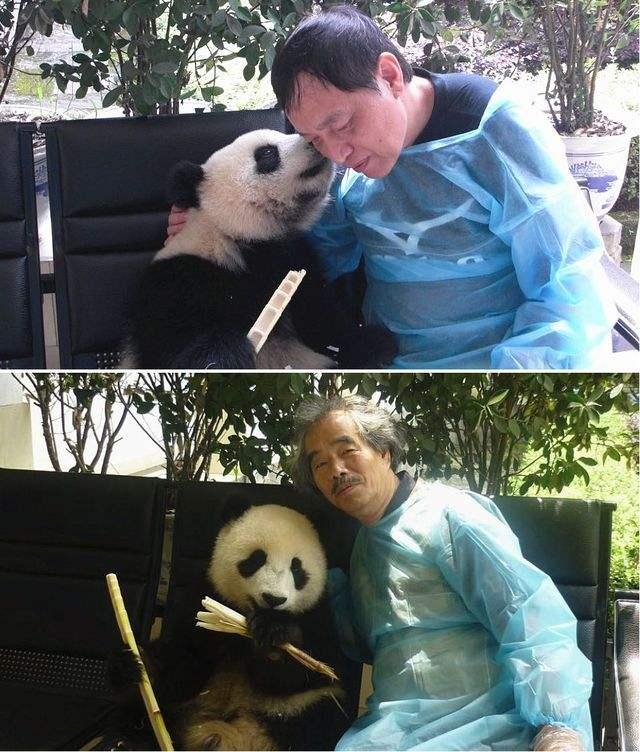 大熊猫绘本在日出版:纯粹感情联系中日人民