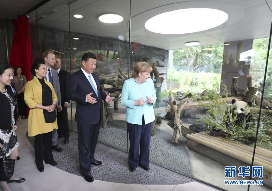 习近平同德国总理默克尔共同出席柏林动物园大熊猫馆开馆仪式