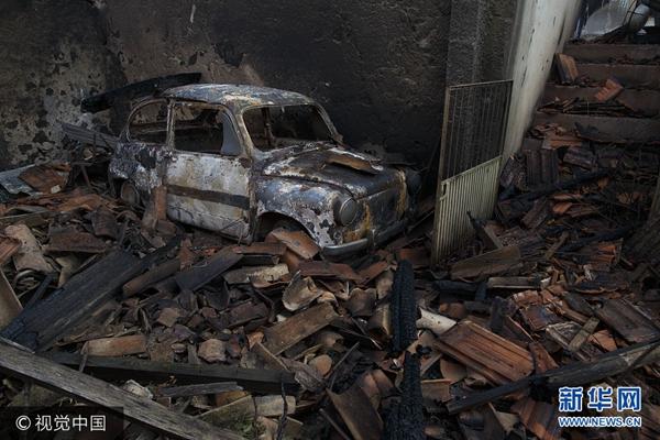 葡萄牙频繁发生森林大火  造成数百人死伤