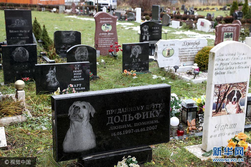 """缅怀""""家庭至亲"""" 俄罗斯宠物墓地颇受欢迎"""