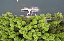 空中鸟瞰杭州