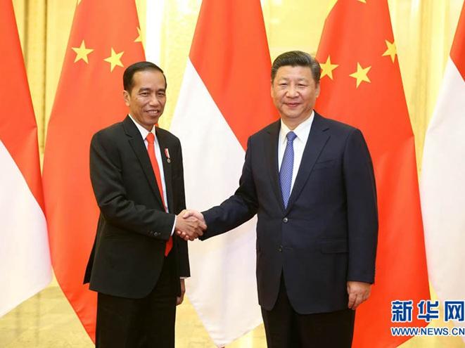 習近平會見印度尼西亞總統