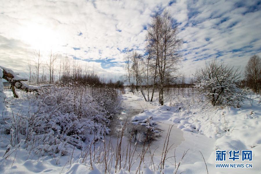 银装素裹!白俄罗斯:雪景如画