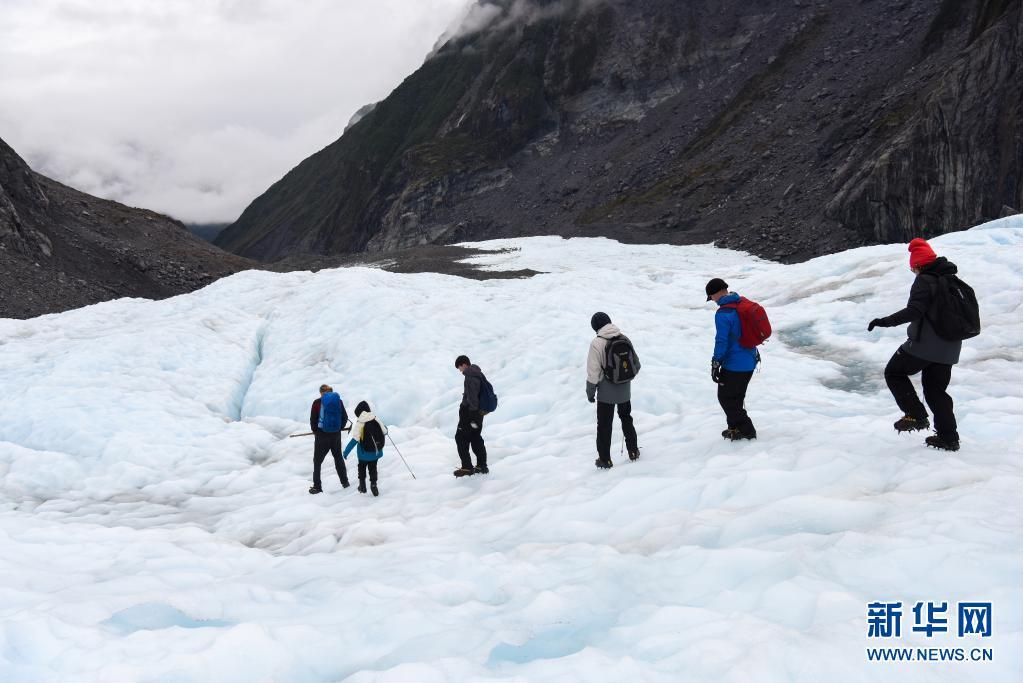 新西兰:正退化的新西兰福克斯冰川