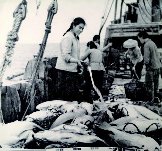 63年前,一群渔家妹惠仲娱乐注册打破禁忌闯出北部湾传奇