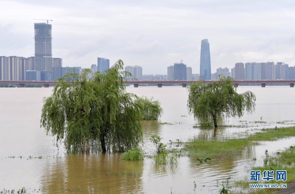 南昌遭遇暴雨天气 赣江水位上涨